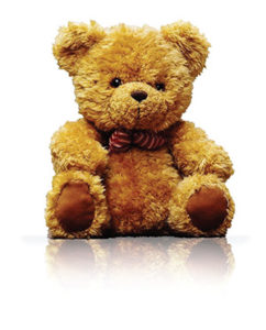 Donate a Teddy Bear